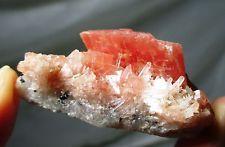 Nice Sweet Home Rhodochrosite crystal on matrix - Alma Colorado...