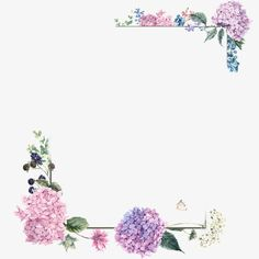Purple blossom borders, Watercolor Painting, Purple, Hydrangea PNG Image and Clipart Flower Frame, Flower Boxes, Flower Art, Watercolor Cards, Watercolor Flowers, Watercolor Paintings, Art Floral, Flower Border Png, Wreath Drawing