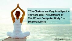 """The chakras are very intelligent – they are like the software of the whole computer body."" — Dharma Mittra"