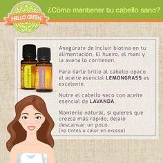 Aléjate de los químicos que se encuentran en los productos de belleza comunes y nutre tu cabello de manera natural.