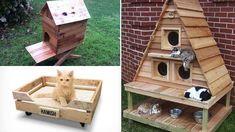 Facebook Twitter Google+ Pinterest Vivere con un animale domestico rende necessaria una attenta gestione degli ambienti condivisi. Chiunque abbia un gatto, per esempio, sa bene quanto sia necessario assicurare loro spazi adeguati al gioco e al riposo. La costruzione di una cuccia potrebbe essere l'idea giusta non solo per garantire[...]