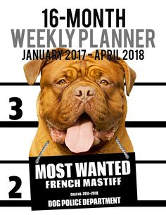 2017-2018 Weekly Planner - Most Wanted French Mastiff: Daily Diary Monthly Yearly Calendar (Dog Planners)-- 2017-2018 Weekly Planner for Dog lovers - French Mastiff lovers in particular!Adorable Most Wanted French Mastiff image graces the cover of this cute engagement calendar. Popular easy to use planner format shows a week-at-a-view to help keep you organized 7 days at a time. Calendar/planner covers 16 months (January 2017 -- April 2018).Helpful for anyone wanting to take charge of their…