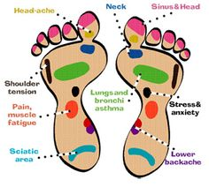 Today many women are seeking reflexology treatment to help deal with menstrual pain, pregnancy concerns, migraines and hormonal issues. Acupressure Massage, Foot Reflexology, Acupuncture, Health And Wellness, Health And Beauty, Health Fitness, Foot Pressure Points, Shoulder Tension, Alternative Health