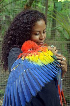 Pet bird stuff...  bruxa da água, becausebirds: parrot-pictures: Best Hug A...