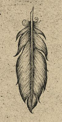 feather: