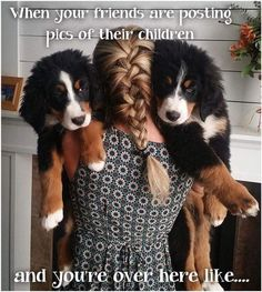 Dog Momma always ❤ Big Dogs, I Love Dogs, Cute Dogs, Cute Dog Pictures, Dog Photos, Burmese Mountain Dogs, Entlebucher, Cute Animals, Animals And Pets