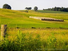 living in the country - Google Search