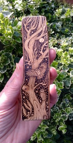 Pyrography on Pyracantha ( Firethorn) G.M.R.2015