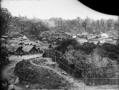 Did tsunami cause resource wars in prehistoric New Zealand? College Classes, Maori Art, Easter Island, Prehistory, Interesting History, Tsunami, British Isles, New Zealand, Hawaiian