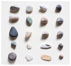 SUBMISSION: Pieces From Maine, 2013. Julianna Woolums Seashells