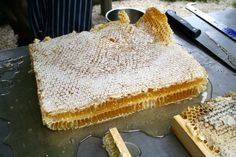extracting honey from natural comb, without heat.