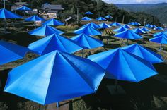 Christo and Jeanne -  Umbrellas, Japan  A 1991 art project using 3100 umbrellas placed in two different valleys in California and Japan to reflect the similarities and differences in the landscape.