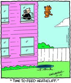 Heathcliff for 10/15/2014 | Heathcliff | Comics | ArcaMax Publishing