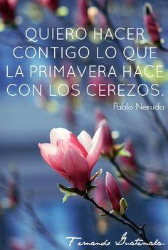 Quiero hacer contigo lo que la primavera hace con los cerezos  Pablo Neruda