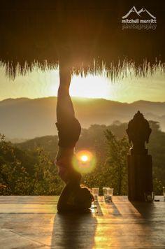 Jungle Spirit Yoga Retreat  Sayulita, Mexico Feb 7-14, 2015 #yogaretreat