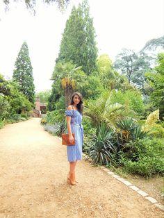 >Nizza Garden<