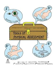 Tools of Physical Assessment #rcp #rt #respiratory