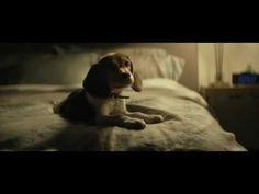 John Wick and sad letter - YouTube