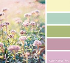 Alina Babina | FLOWERS color palette