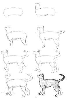 Elementary drawing lessons - cats - draw animals / How to Draw. Painting and Drawing for Kids / Luntiks. Children's Arts and Crafts Activities. Drawing and Poems Animal Sketches, Animal Drawings, Drawing Sketches, Pencil Drawings, Sketching, Cat Drawing Tutorial, Drawing Tutorials, Art Tutorials, Manga Tutorial