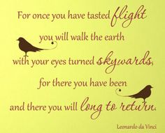 Stunning Wall Decal- quote from Leonardo Da Vinci