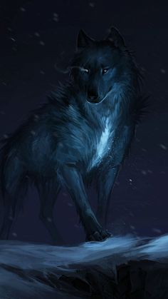 Moon Wolf Picture is the simple gallery website for all best pictures wallpaper desktop. Wait, not onlyMoon Wolf Picture you can meet more wallpapers in with high-definition contents. Tier Wallpaper, Wolf Wallpaper, Animal Wallpaper, Mobile Wallpaper, Neon Wallpaper, Black Wallpaper, Wallpaper Ideas, Dark Fantasy Art, Fantasy Wolf