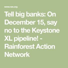 Tell big banks: On December 15, say no to the Keystone XL pipeline! - Rainforest Action Network