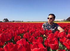 The Netherlands: a beauty I call home #keukenhof #lisse #netherlands #amsterdam #europe #tulips #photography #photo #photooftheday #picoftheday #instalike #like4like #igers #selfie #dubai #usa #london #asian #asia #tourist #travel #passionpassport #photography #nature #nikon #canon #nikon_photography_ #instacool #instamood #instagood by hassanghaznavi1