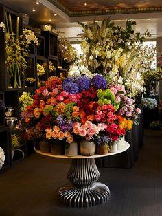 healthy breakfast ideas for picky eaters women video Hd Flowers, Luxury Flowers, Beautiful Flowers, Florist Shop Interior, Shop Interior Design, Wallpaper Colour, Flower Shop Interiors, Flower Shop Design, Design Light