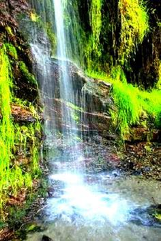 Quebrada El Guayabal, Parque Nacional El Ávila Caracas. Venezuela, un espacio de paz! <3
