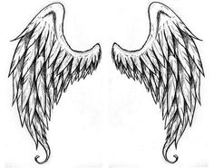 Angel Wings ~ Drawings