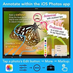 """""""➰ Did you know that you can markup an image with the Photos app on an iPhone or iPad? It& kind of hidden. Food Doodles, Instagram Accounts, Instagram Posts, Teaching Technology, Green Dot, Ios, Homeschool, Shapes, Photo And Video"""