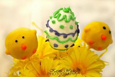 easter cake pops ideas (no recipe or instructions included on this link, just pics)