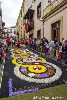 TENERIFE EN IMÁGENES: ALFOMBRAS DEL CORPUS CHRISTI DE LA OROTAVA, 2014