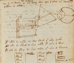 Notes on optics by Sir Isaac Newton.