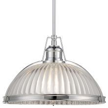 "1 Light 10"" Height Indoor Full Sized Pendant in Chrome"
