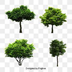 trees,tree combination map,plant,tree overlooking,tree,trees clipart