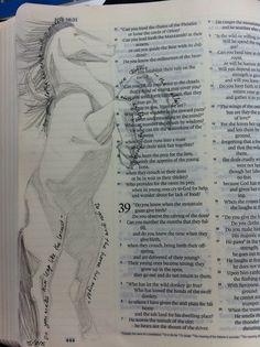 Bible journal 05/08/15