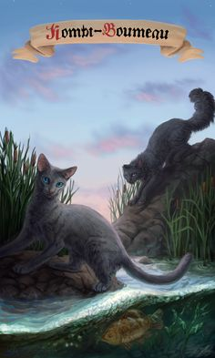Warrior cats - Mistyfoot and Stonefur by Cat-Patrisiya.deviantart.com on @DeviantArt