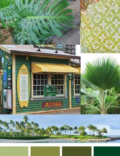 Image from http://mycolortopia.com/blog/wp-content/uploads/2013/08/tropical-green-paints.jpg.