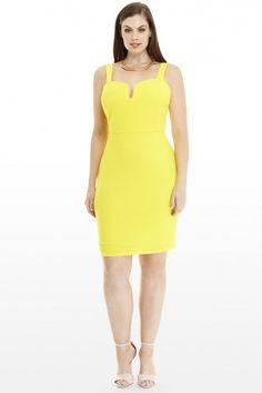 d2d3c138c0f7e Plus Size Carmela Bodycon Dress