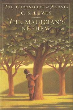 The Magician's nephew - Chris Van Allsburg cover illustration