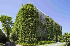 Тропический сад в отеле Naman Retreat — HQROOM