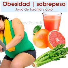 Obesidad | sobrepeso Jugo de toronja y apio; Tomar un vaso del jugo de toronja con apio, basta con 1 toronja y dos ramas de apio.