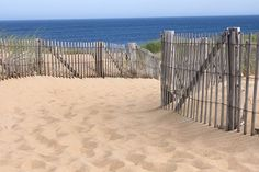 From Cape Cod to Connecticut, here is a compilation of the best beaches in New England to catch some rays, take a hike or have a picnic.