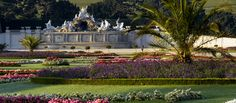 """Schonbrunn castle. Incredible. Take the """"Sound of Music"""" tour"""