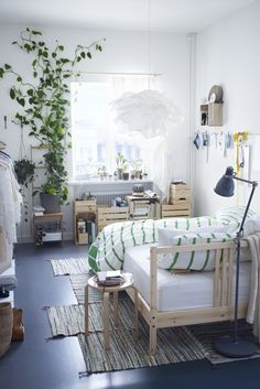 Organic shapes, natural materials, green plants and a healthy dose of sunshine combine to create a wholesome feeling indoors.