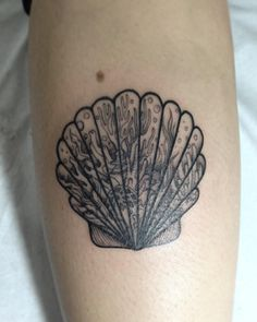 Coral Reef Seashell Tattoo | Venice Tattoo Art Designs
