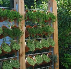 DIY Garden & Yard Privacy • ideas & tutorials! This would be great for herbs!
