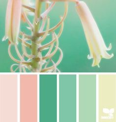 Paleta de colores pasteles